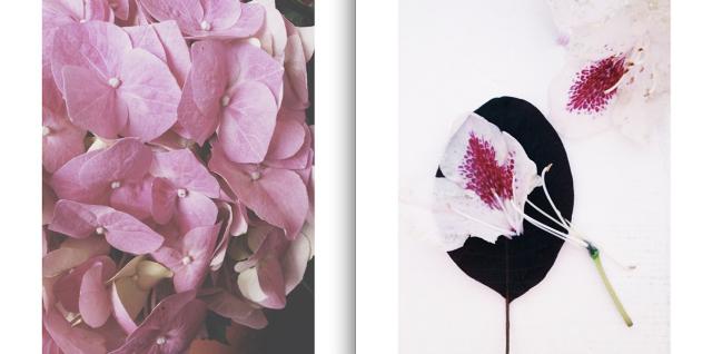 Stilzitat Instagram via Passion and Obsession blog