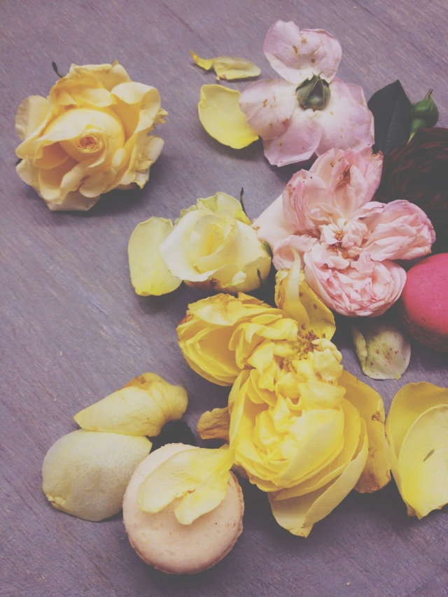 Roses & Macarons via Stilzitat blog