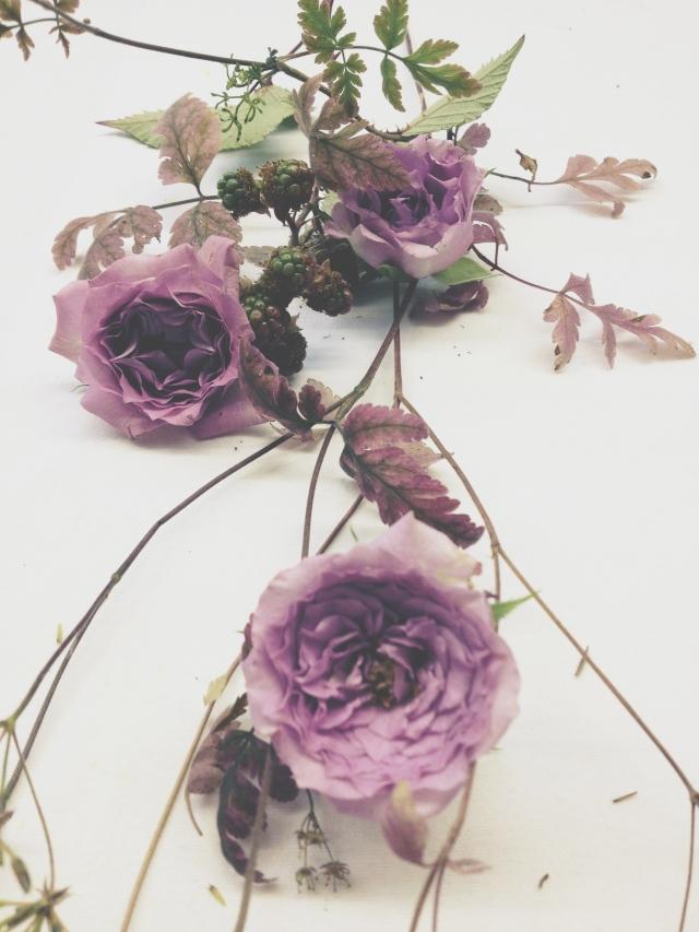 Pale Roses via Stilzitat blog