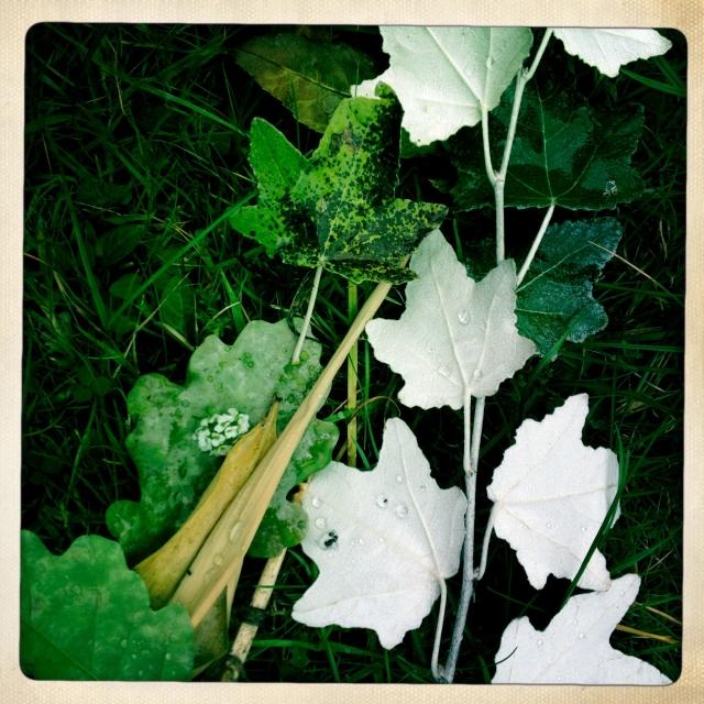 Fall flower arrangement via Stilzitat blog