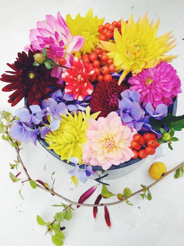 Colorful dahlias via Stilzitat blog