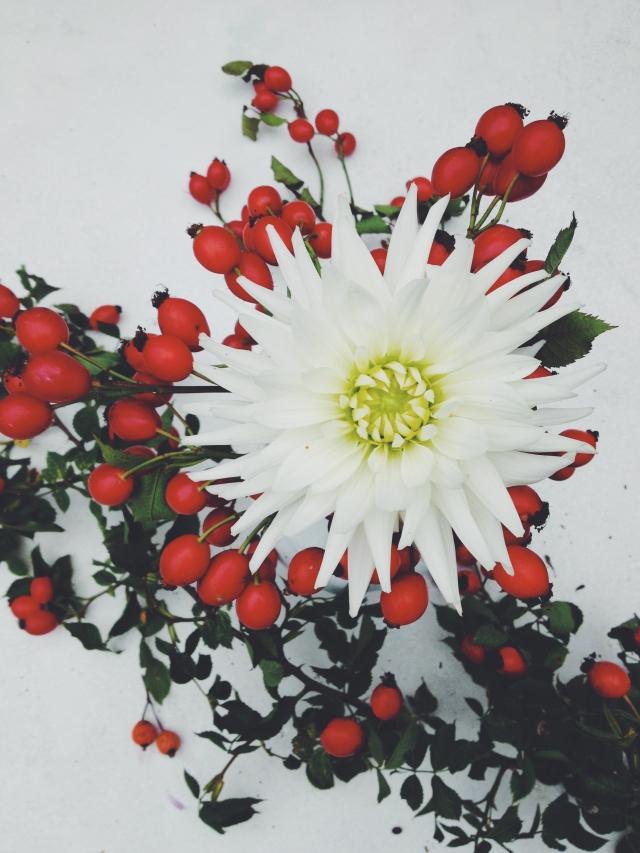 Colorful Dahlias with fruits of fall via Stilzitat blog