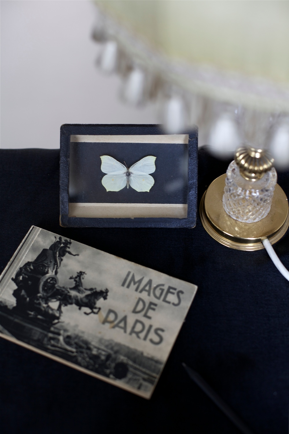 Paris and butterflies details via Stilzitat blog