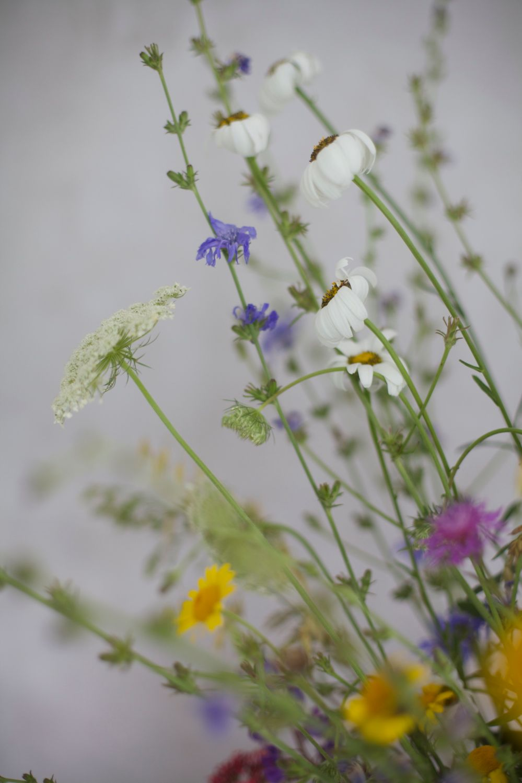 Summer flowers via Stilzitat blog