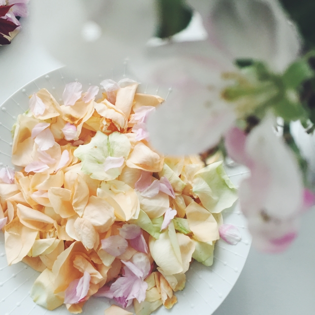 rose petals apple blossom